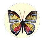 Knopen-parelmoer-vlinder-ivoorkleur