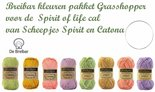 Spirit-of-life-cal-Breibar-pakket-Grasshopper-Scheepjes-Spirit-en-Catona