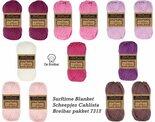 Surftime-Blanket-van-Scheepjes-Cahlista-Breibar-pakket-7312