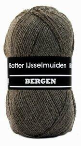 Botter IJsselmuiden  Bergen 03 bruin