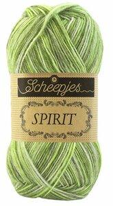 Spirit Grasshopper 307 Scheepjes